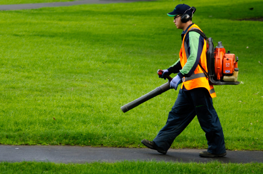 Landscaper operating Leaf Blower