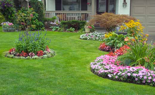 A lush green lawn with borders and colorful flowers